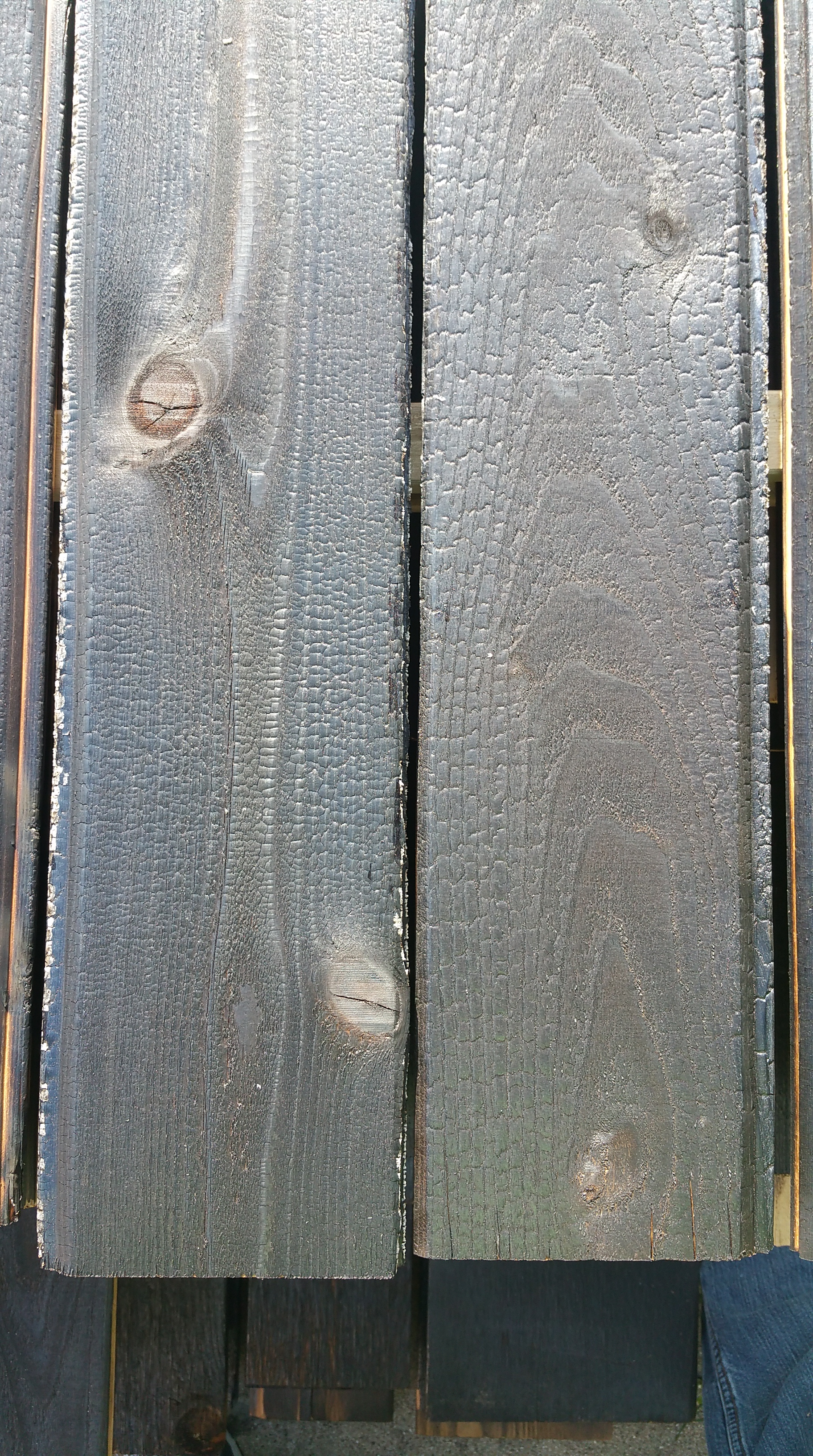 charred-cedar-close-up-gator-2