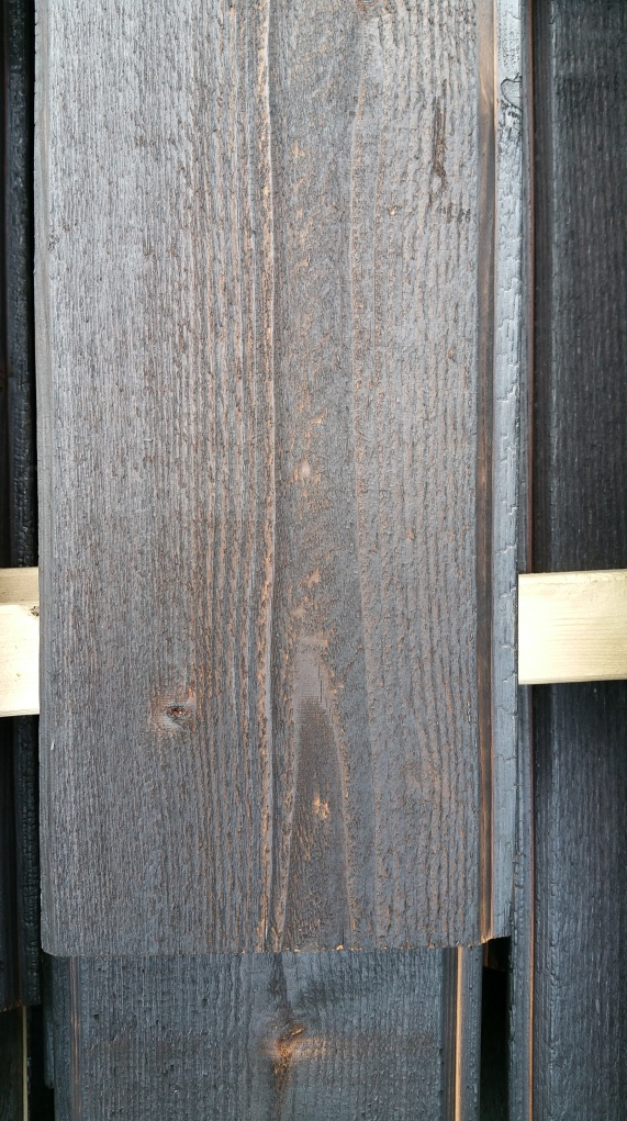 charred-cedar-close-up-lighter-version