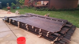 charred-cedar-pile-grows-after-rain
