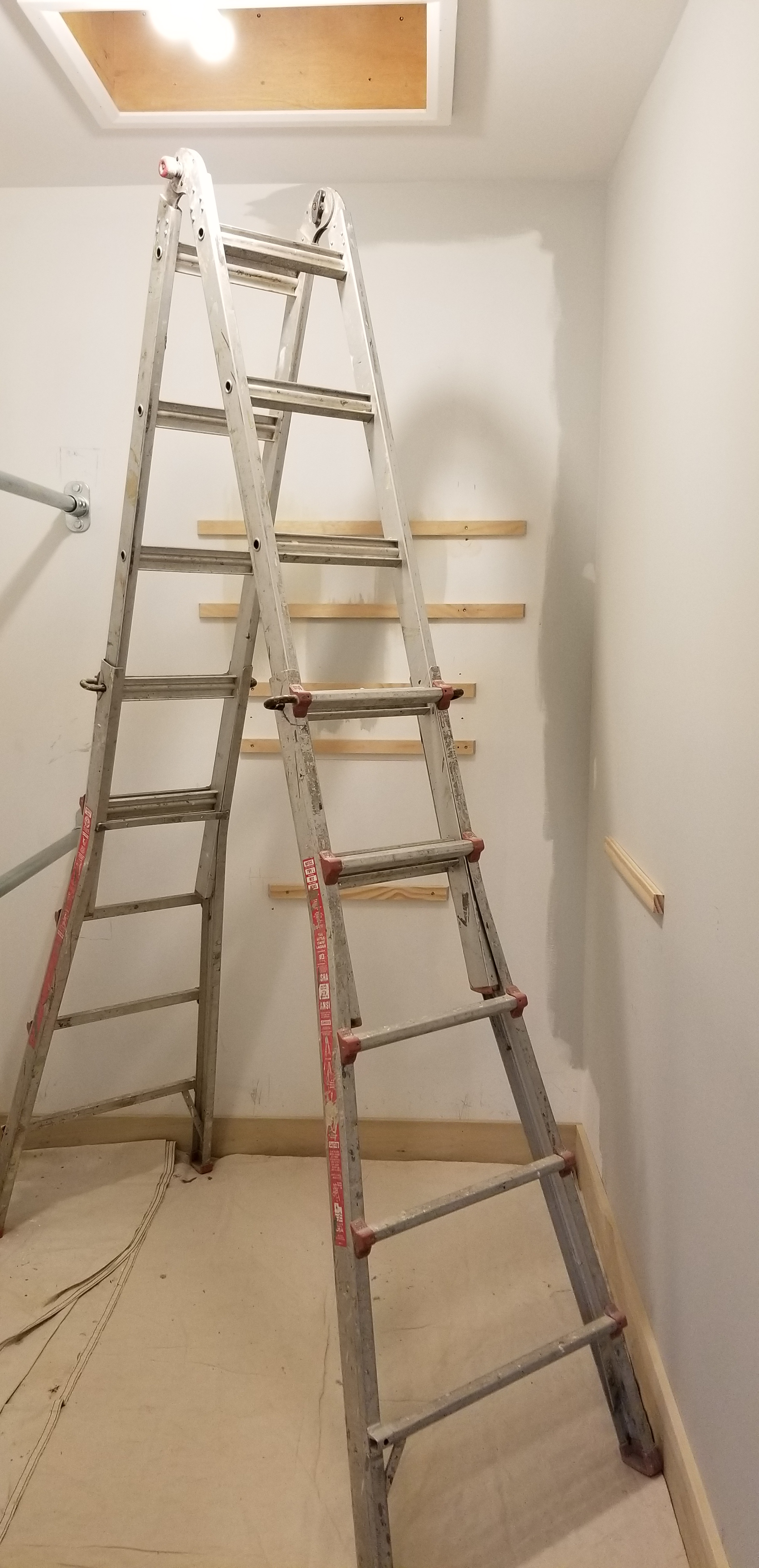 ladder in wic