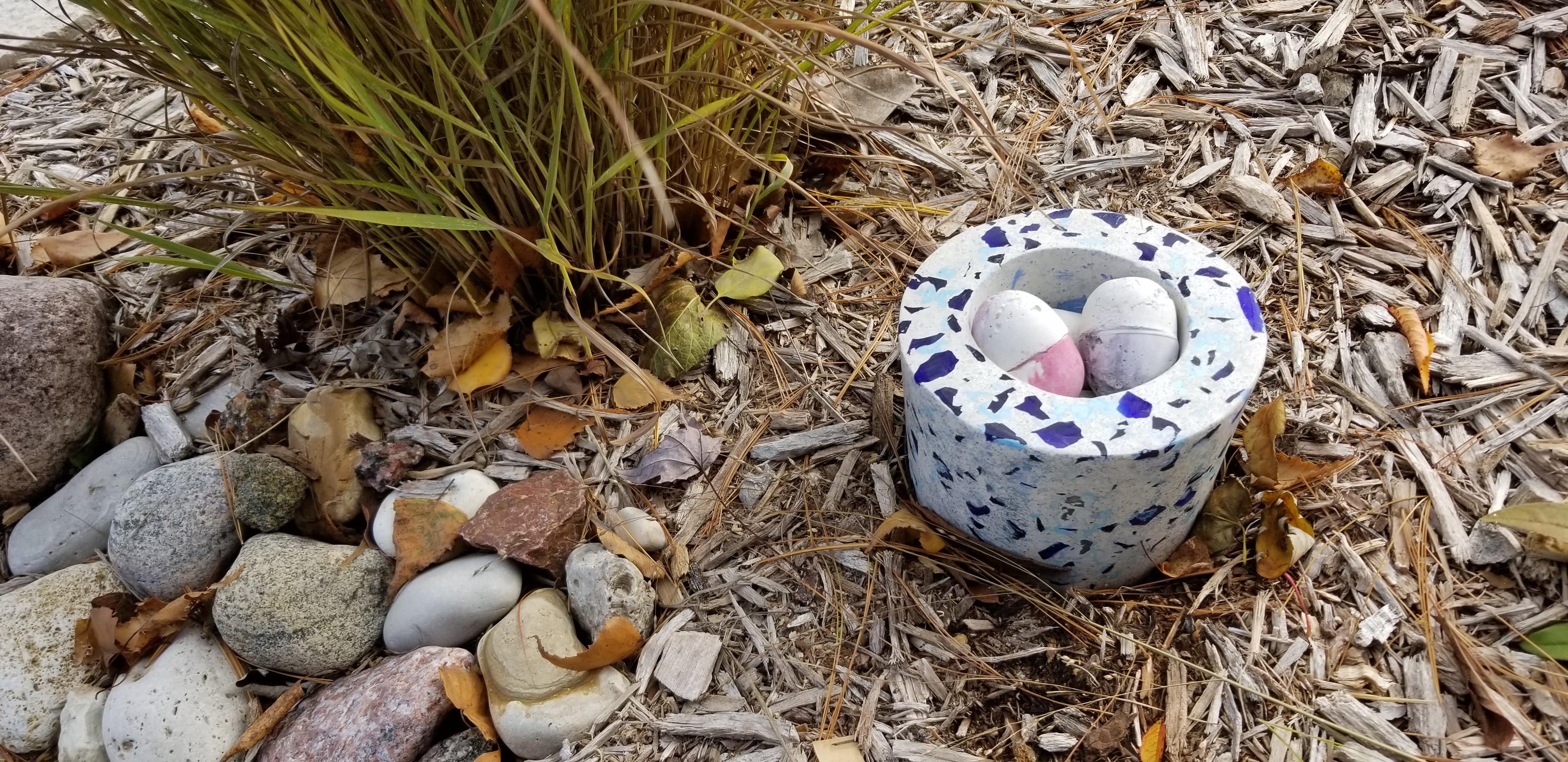 eggs in yard